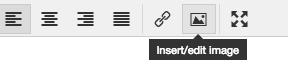 Select the insert/edit image icon to insert an image to your JAMSpiritSites dance website.